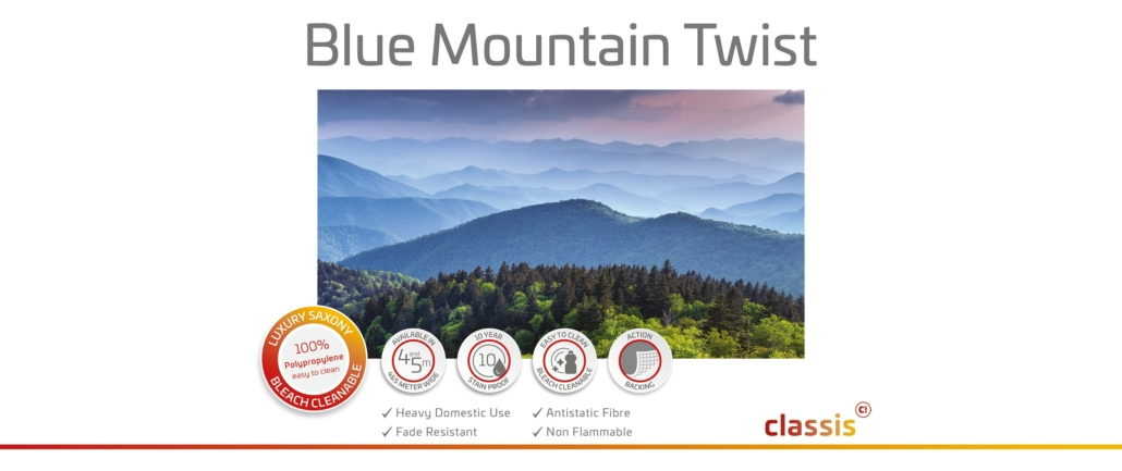 Bluemountaintwist Website 3000x1260px