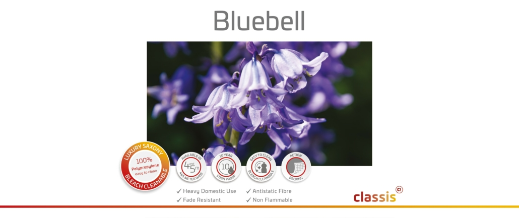 Bluebell Website 3000x1260px