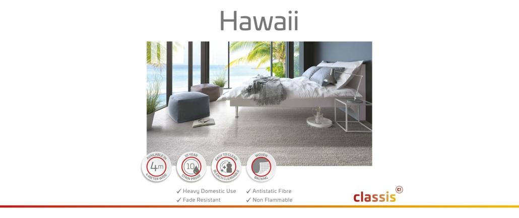 Hawaii Website 3000x1260px