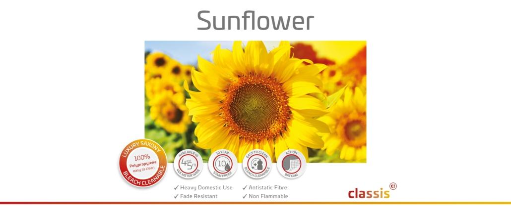 Sunflower Website 3000x1260px