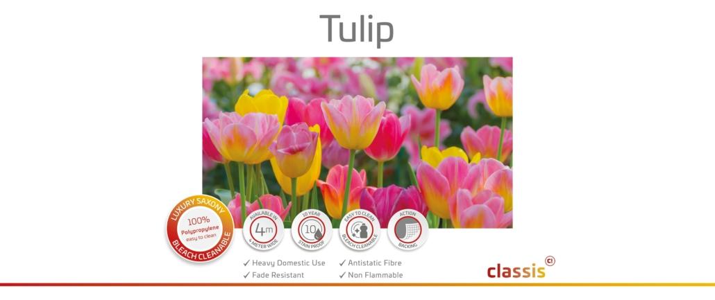 Tulip Website 3000x1260px
