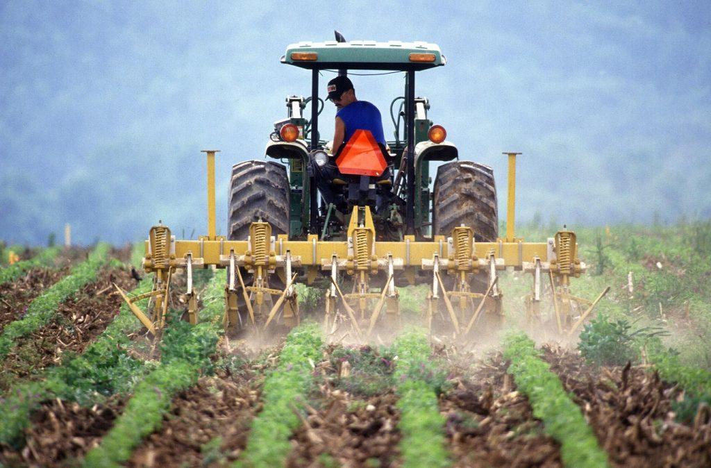 Landbrukssektoren er en av fokusområdene for både Climate Futures og CONFER