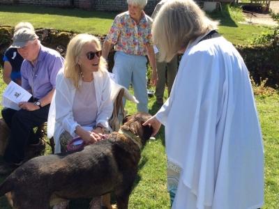 Holy Trinity Pet Service