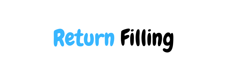Return Filing