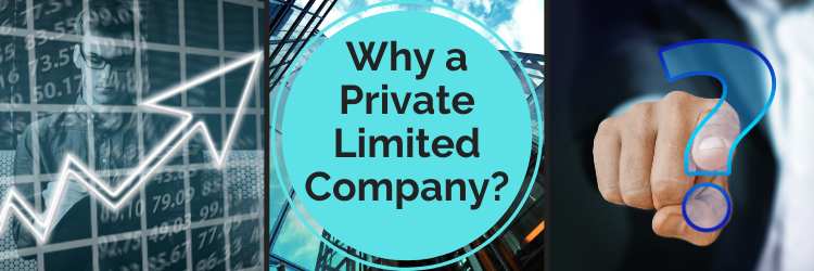 why private Limited company is popular?