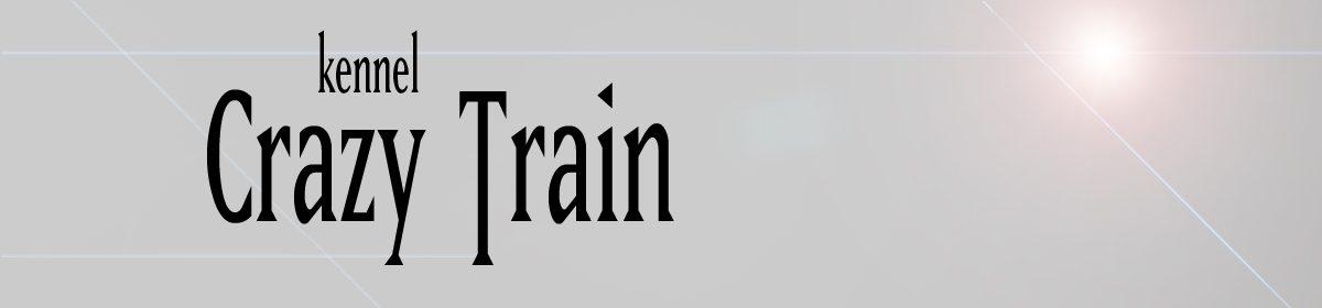 Kennel Crazy Train