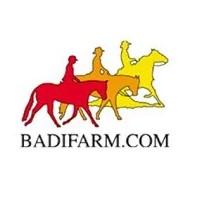 Badi Farm