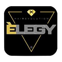 Elegy up