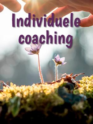Individuele coaching