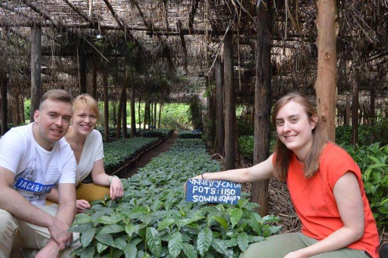 Malawi Koffie En Thee Reis Fotoreportage