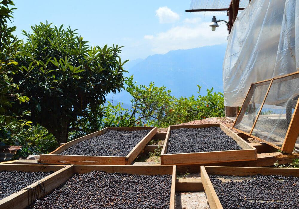 Guatemala – El Peñón - drogen in zon