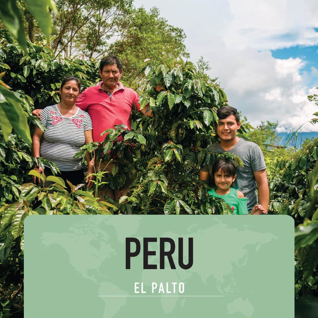 Koffie Van De Maand Januaro 2021 - Peru – El Palto