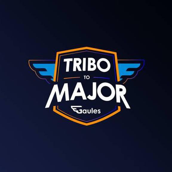 Tribo To Major: My Best CSGO Picks