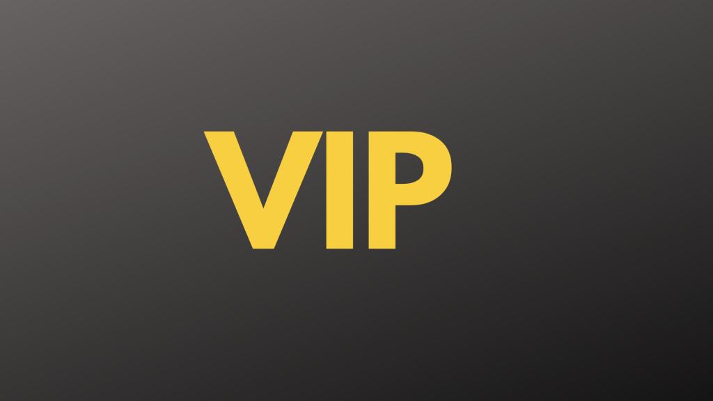 VIP GROUP 2021
