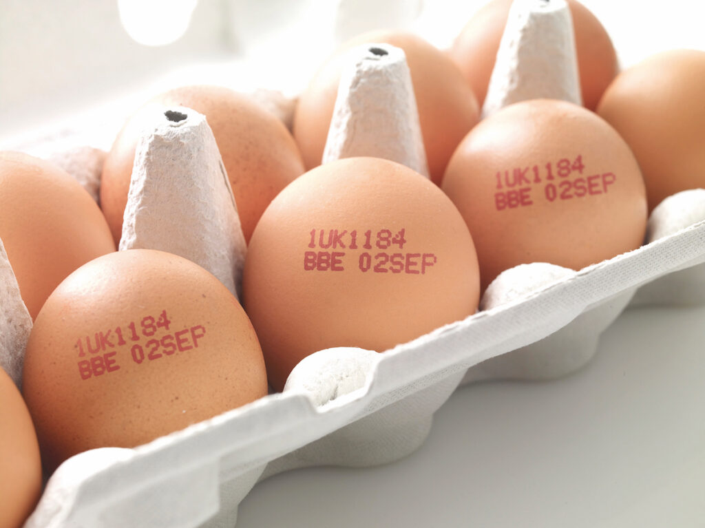 Egg Stamp - Traditional Egg Stamping for small local farms