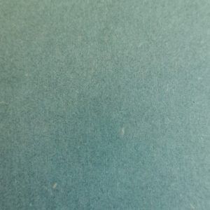 Forescolor_green_1