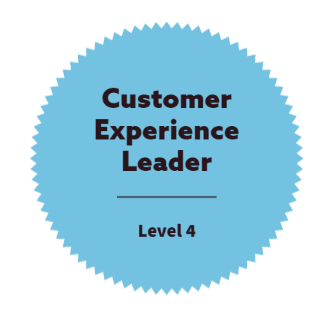 Customer experience Leader
