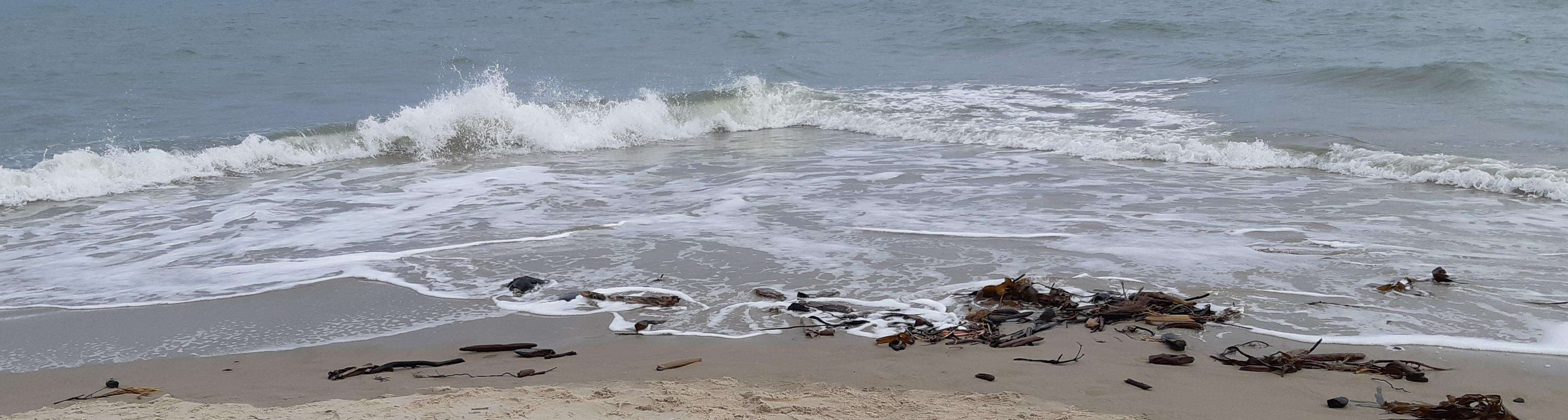 Skagens modsatrettede bølger kan ligesom motivation kæmpe uden fælles mål.  Fotograf: Ivan Munk