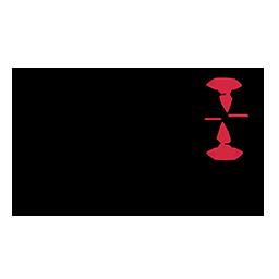 logo_XIC_256x256