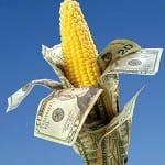 corn_with_dollars