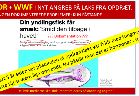 DR propaganda, grafik Allan Holm Nielsen