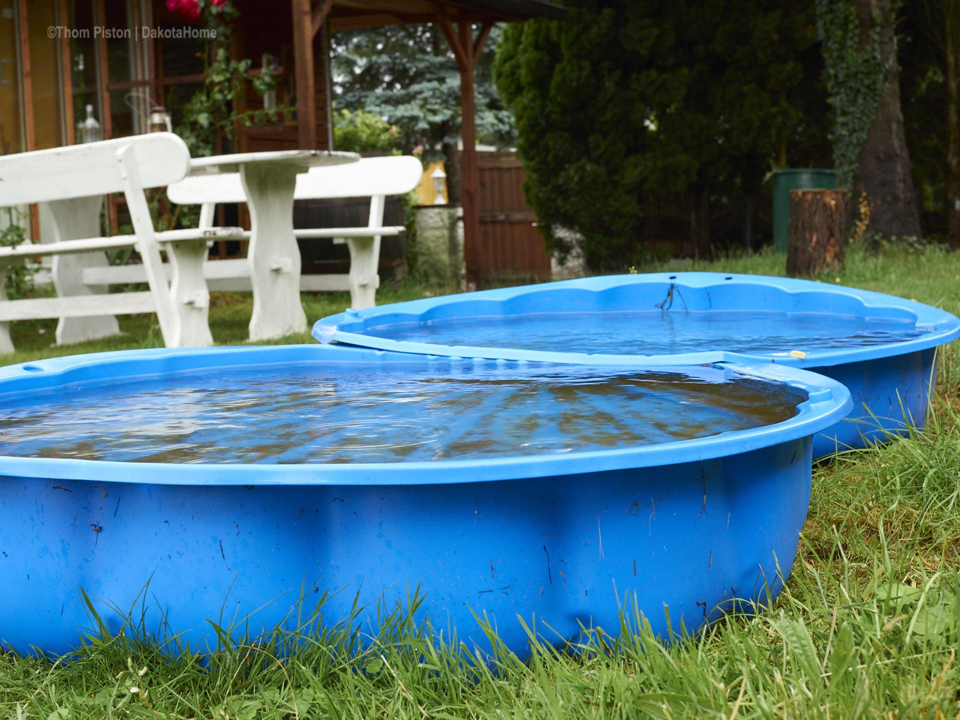 Bulldoggen Pool VOLL
