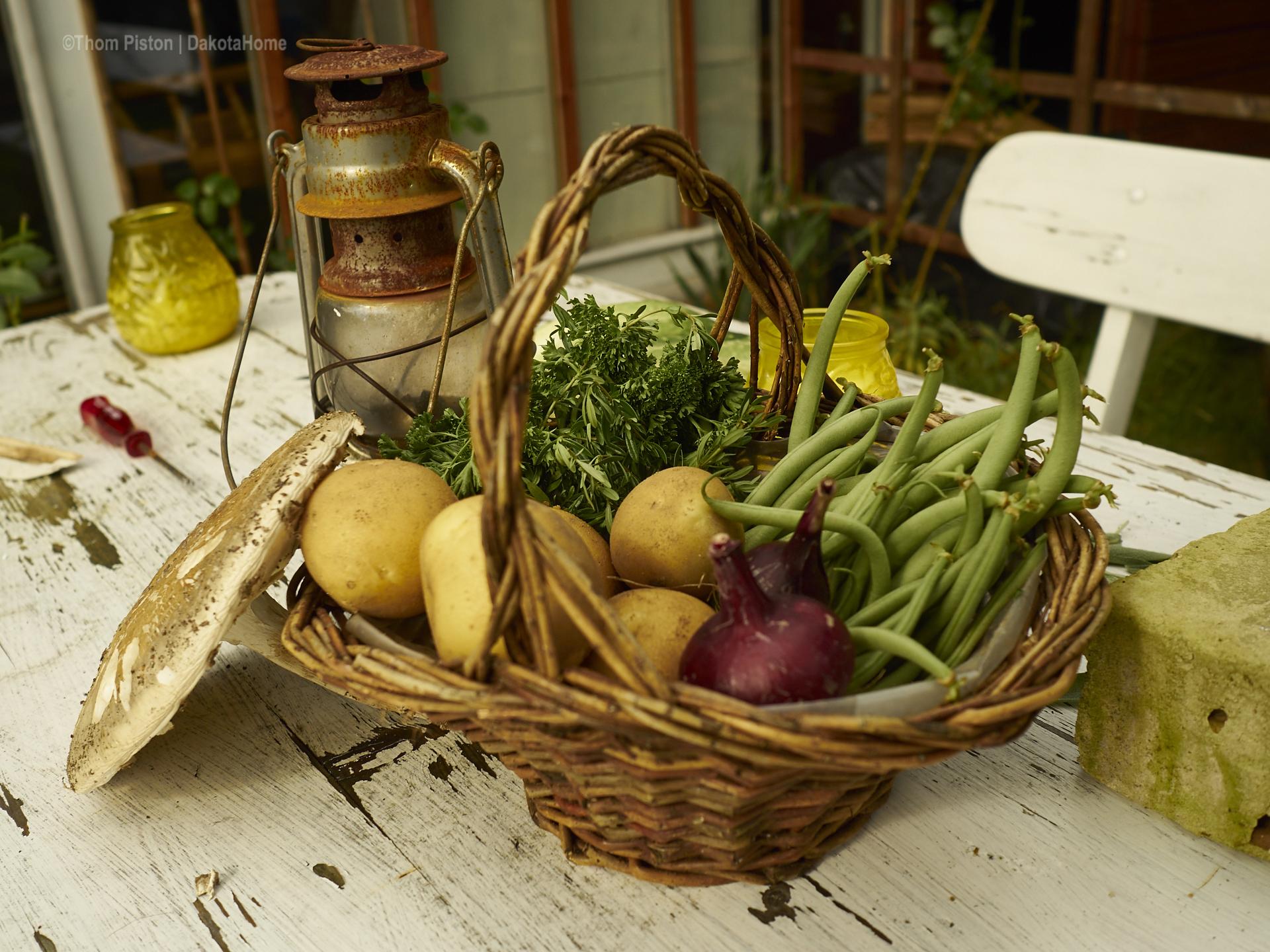 Gemüse, Gewächshaus & Gartenliebe im Dakota Home