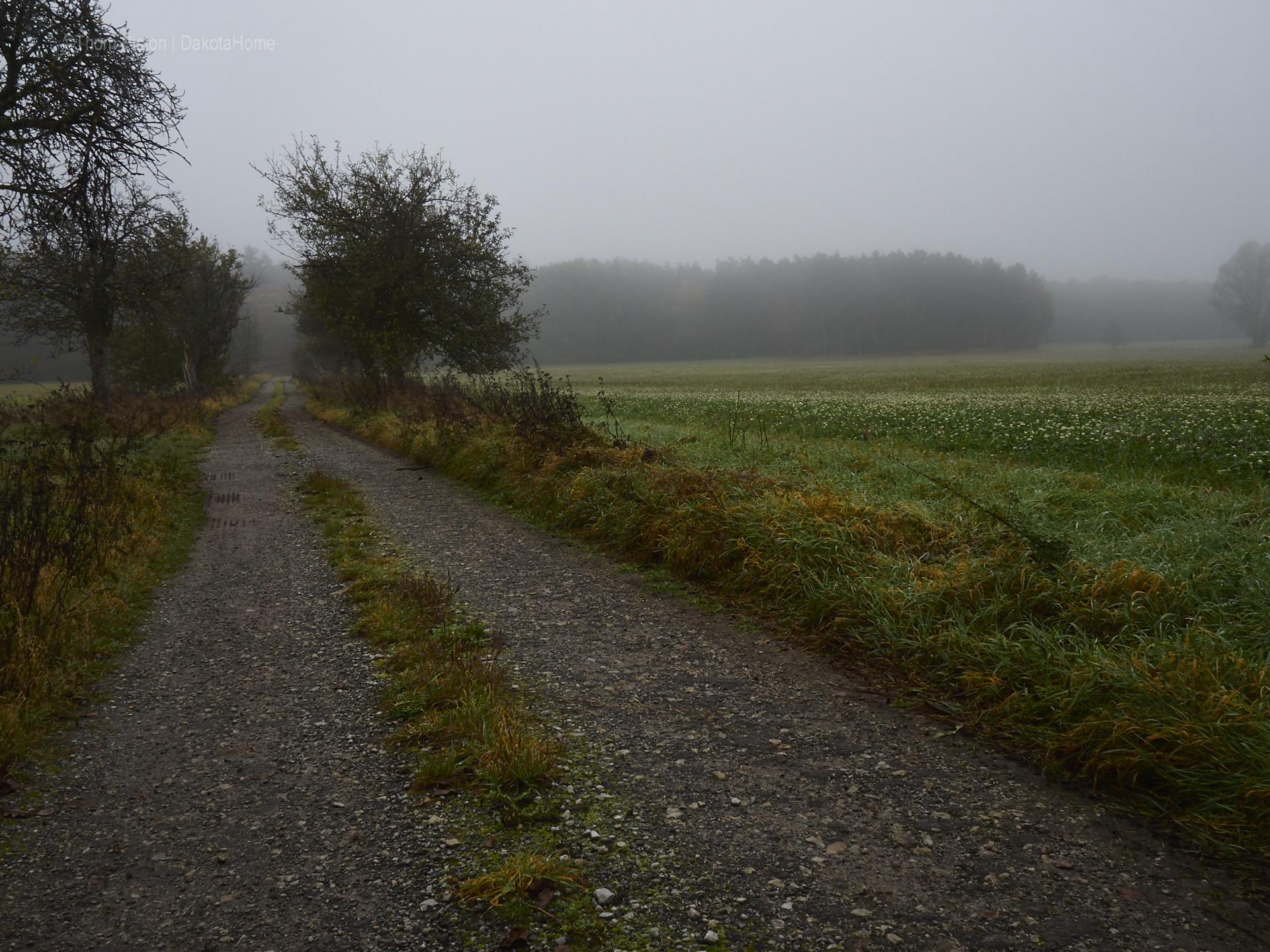 Ende Oktober…und der Herbst kommt gewaltig in Brandenburg an