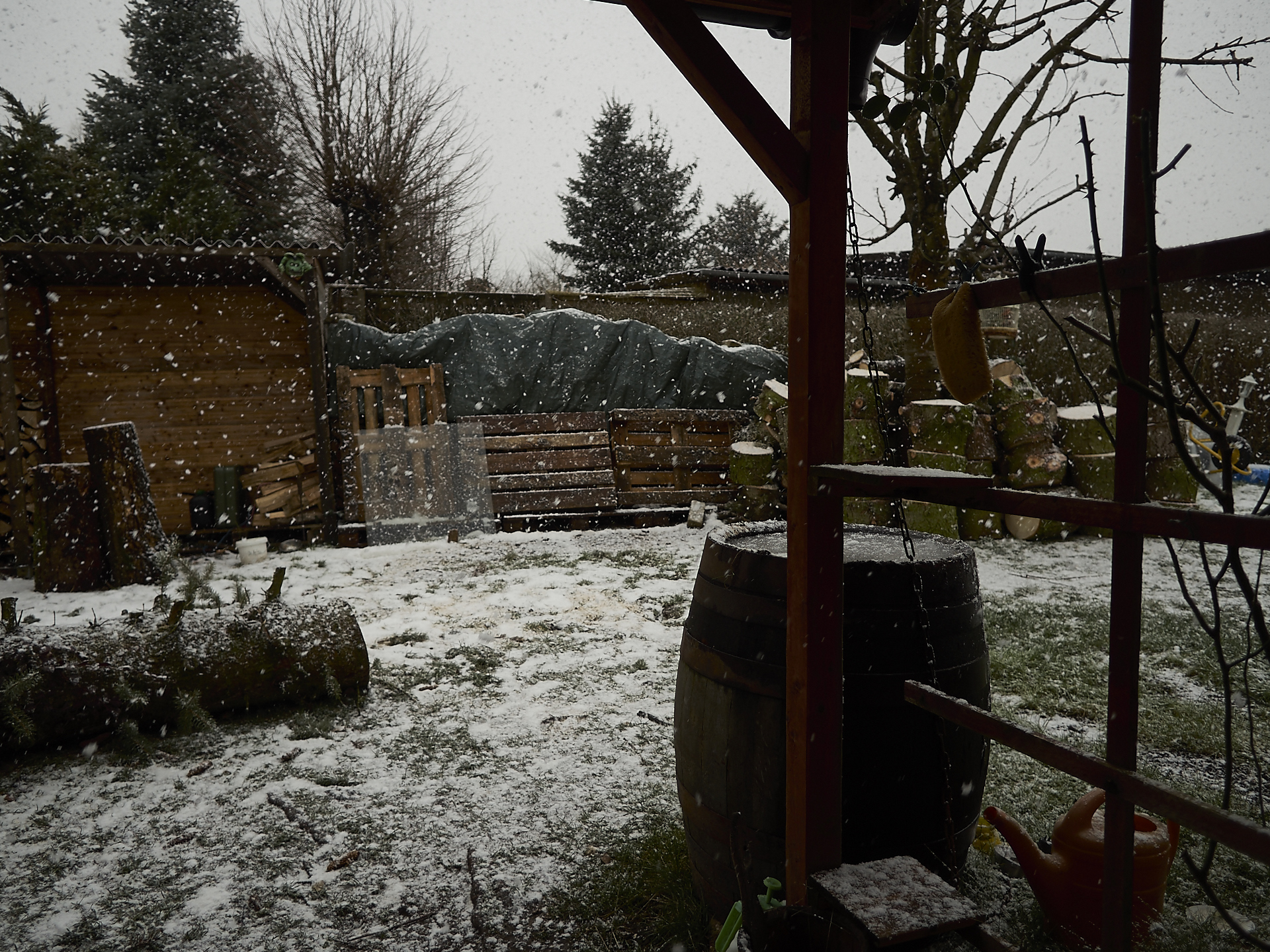 Schnee at Dakota Home