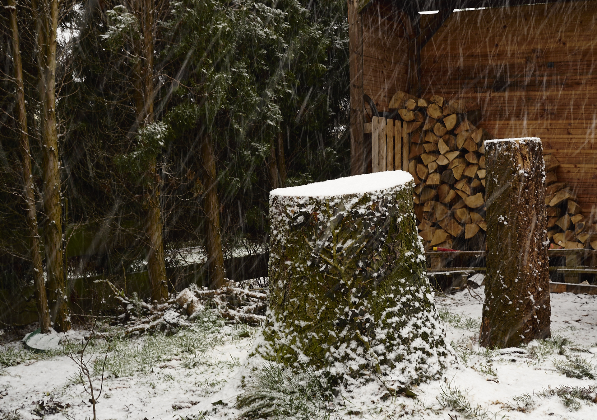 Hallo Februar, Hallo Winter at Dakota Home