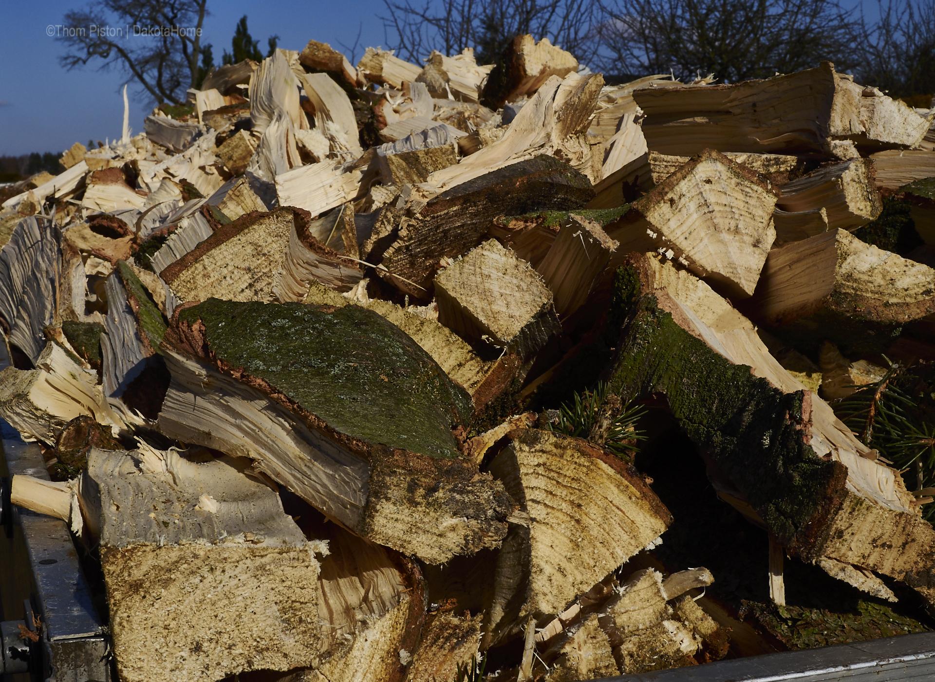 Holz abladen für den Winter 2020/21