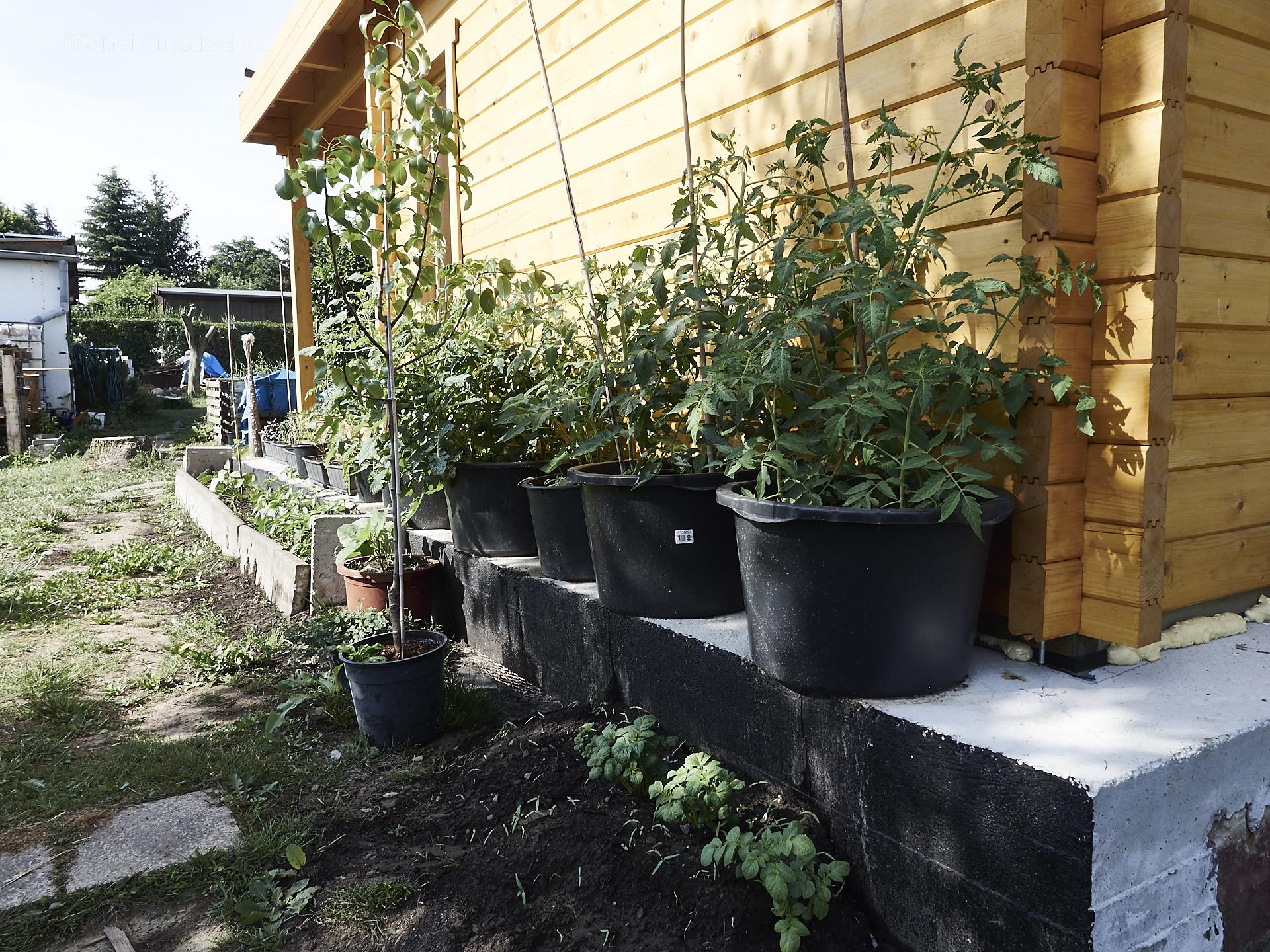 Tinyhouse Garten – stand letzte Woche