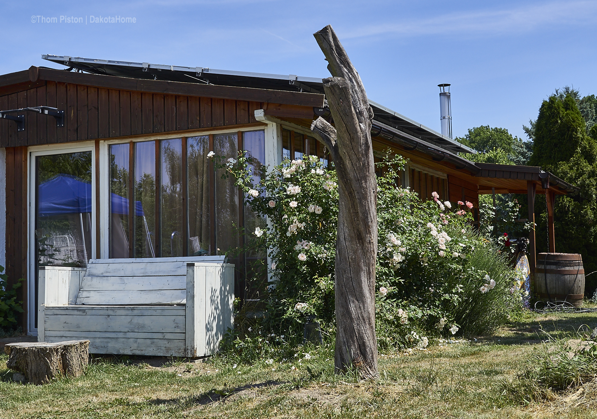 Unsere Rosen at Dakota Home, Juni 2019, Brandenburg