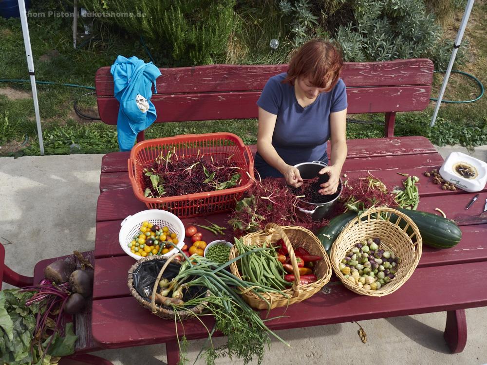 die fleissige Frau am Gemüse bearbeiten...