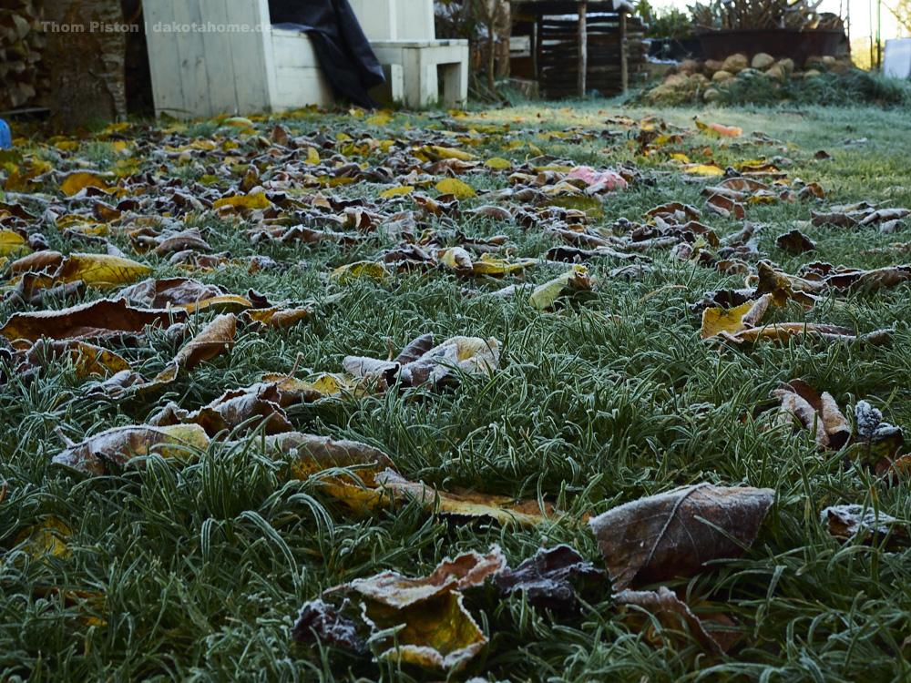 Frost ende Oktober 2019, Brandenbur, Dakota Home
