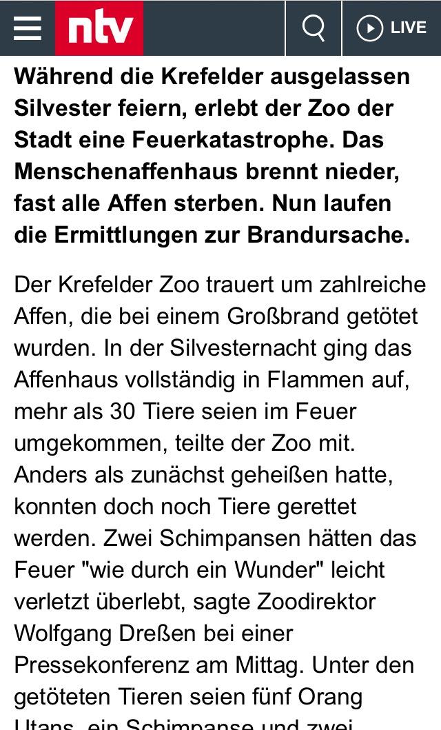 krefelder zoo gross feuer 2019