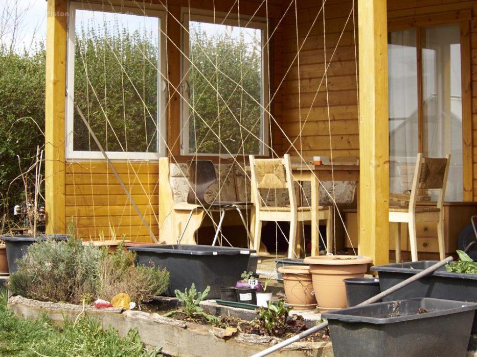 Gartenarbeit der Frau, da sollen sich Bohnen hochranken...