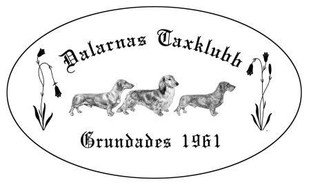 Dalarnas taxklubb