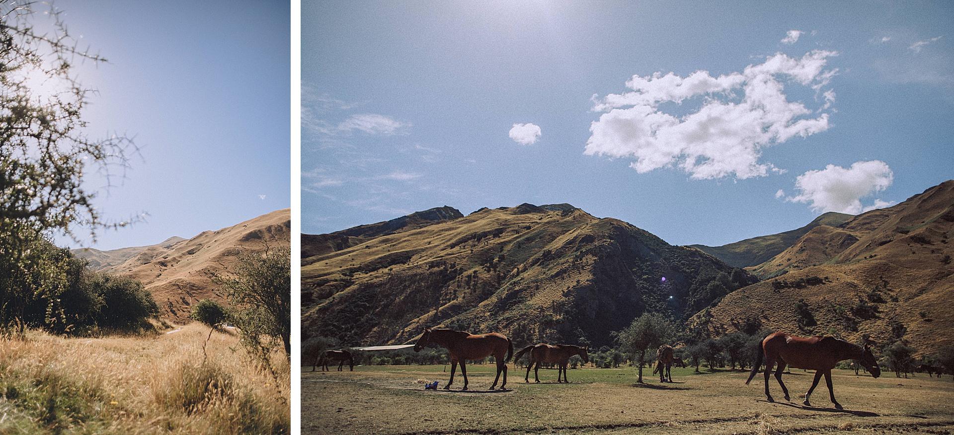 family-roadtrip-neuseeland-travelnewzealand-danielzube_0534.jpg