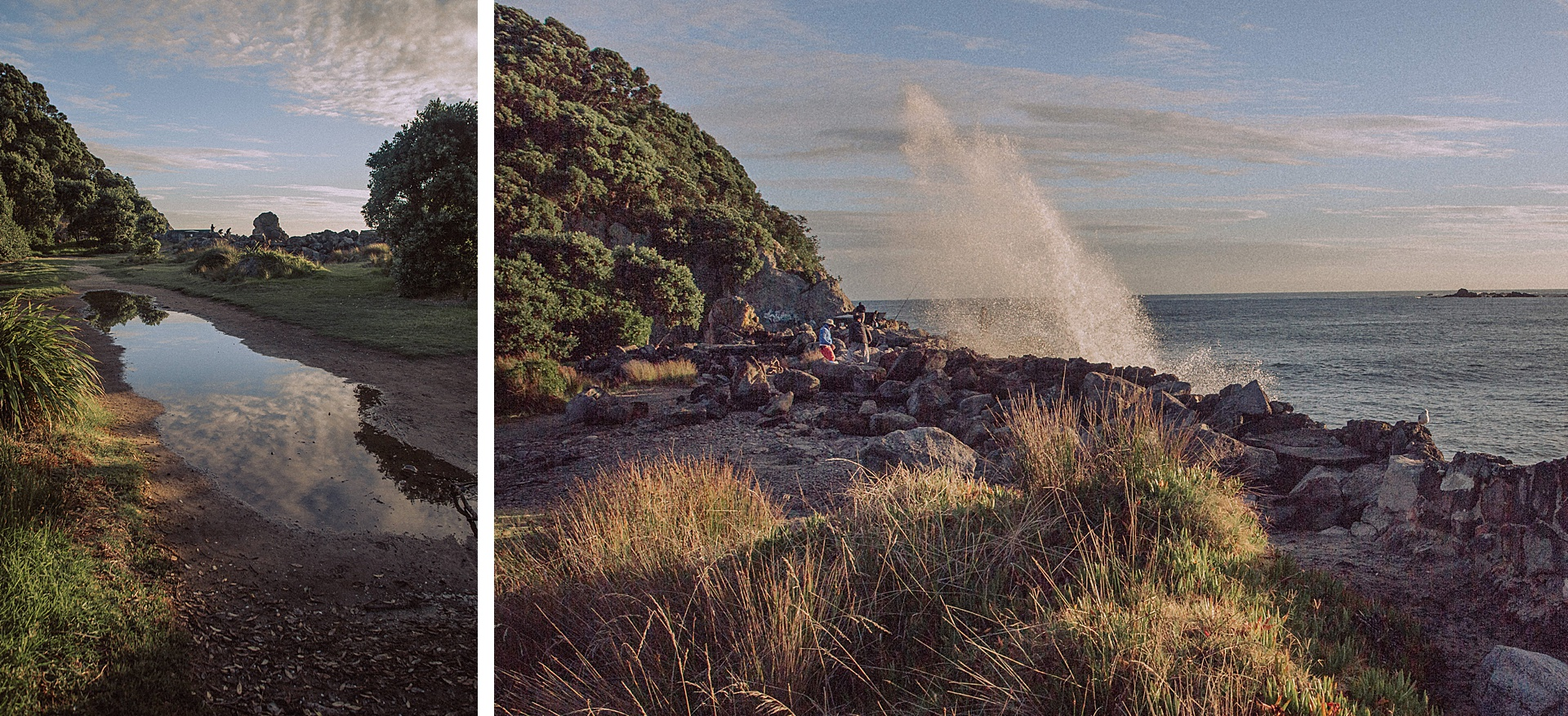 family-roadtrip-neuseeland-travelnewzealand-danielzube_0635.jpg