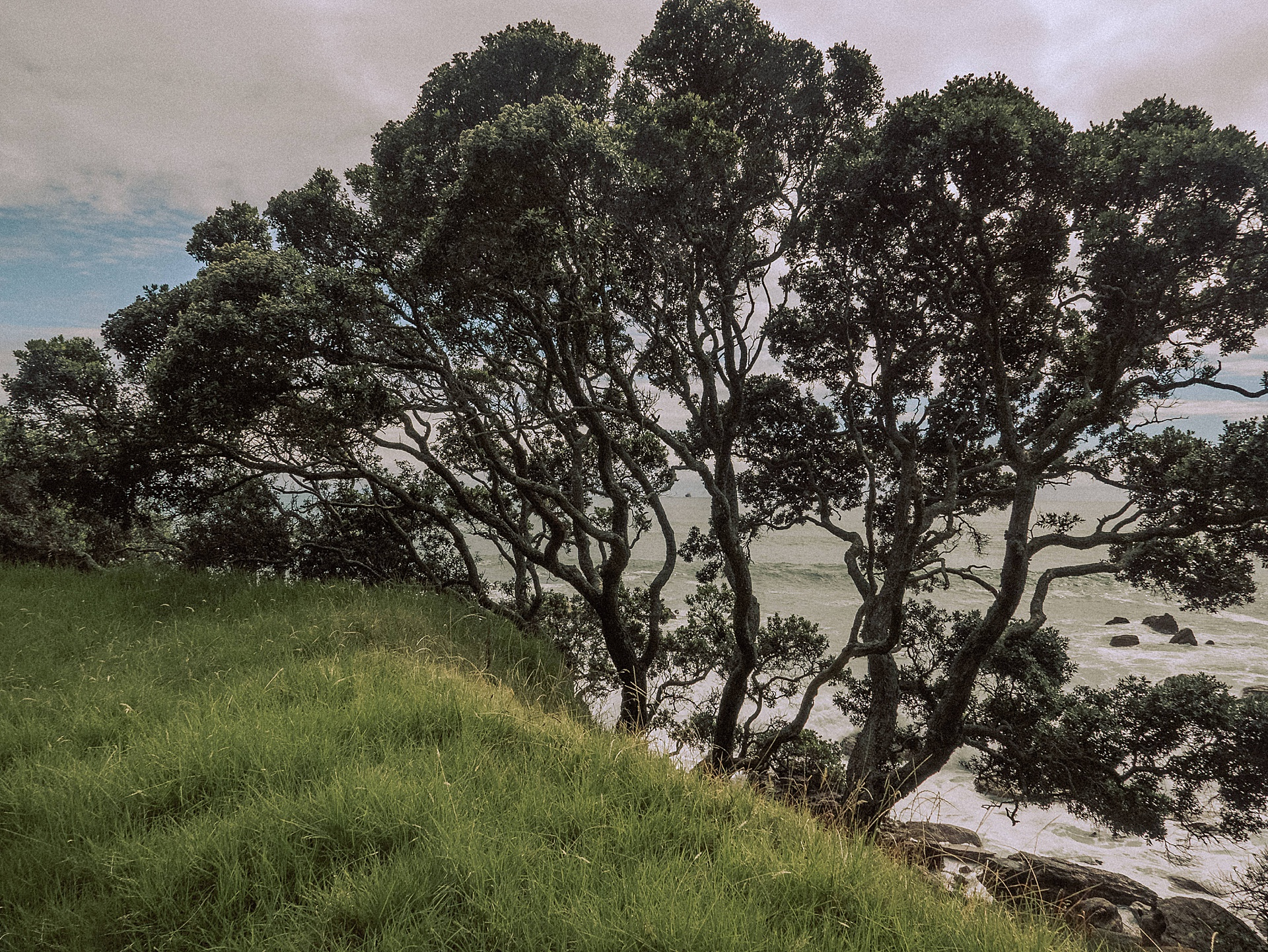 family-roadtrip-neuseeland-travelnewzealand-danielzube_0639.jpg