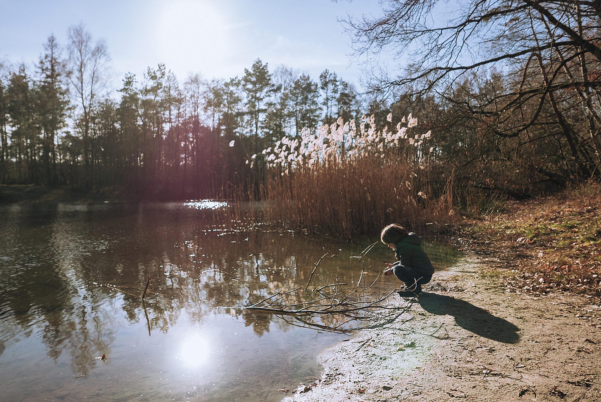 Sonnenstrahlen am Stöckser See