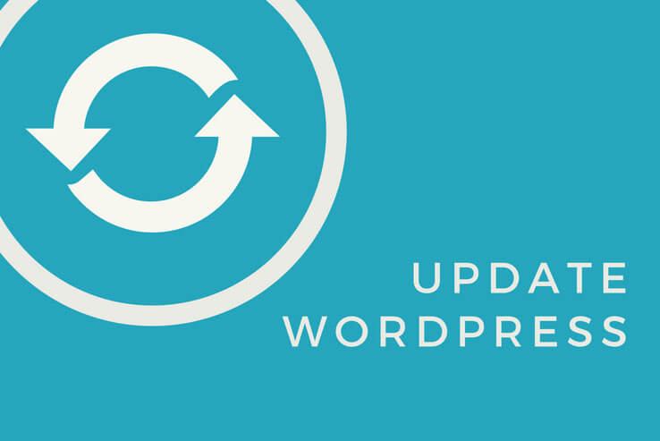 Opdater wordpress