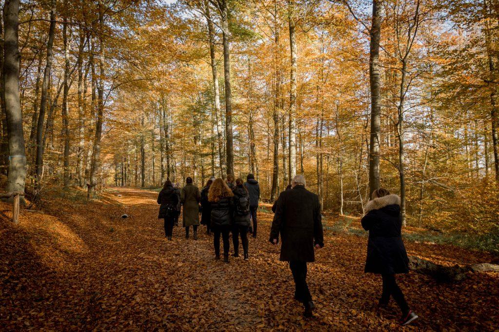 Trauerfeier im Friedwald Lützelhausen, Bestattungsfotografie, Menschen auf Waldweg im Herbst