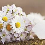 bouquet of white flowers, Testimonials from my Celebrancy clients.