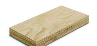lvl-balken D&D Wood