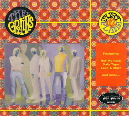 THE GRAINS - Just Our Flame CD