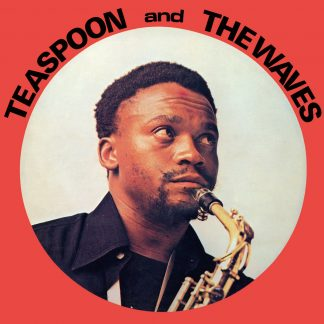TEASPOON & THE WAVES: Teaspoon & The Waves LP