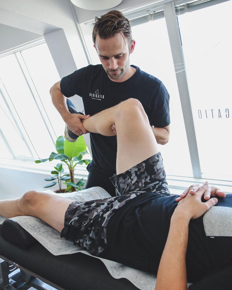 Fysioterapi Dedicatio