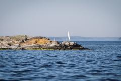 stenar-i-vatten